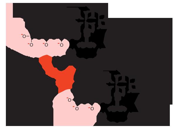 transformación-de-atp-a-adp